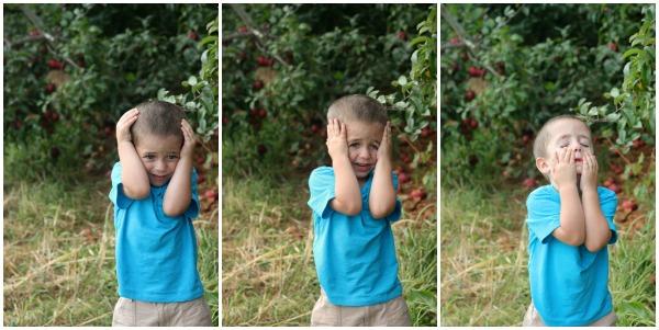Mason Apple Picking Collage 4