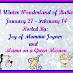 A Winter Wonderland #Giveaway