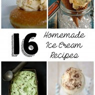16 Homemade Ice Cream Recipes