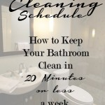 Bathroom Cleaning Schedule for a Cleaner 2015 #BehindClosedDoors