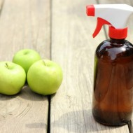 The Dirty Dozen + DIY Fruit and Vegetable Wash
