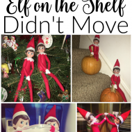 8 Reasons Your Elf on the Shelf Didn't Move
