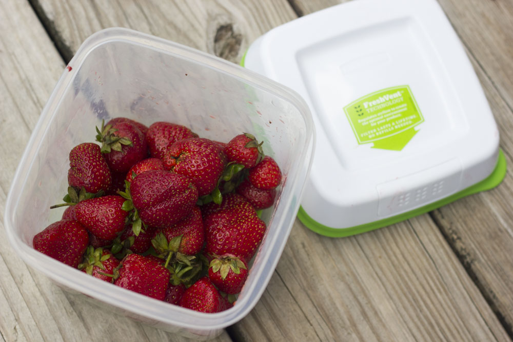 strawberry in freshworks containter